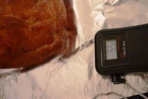 Pulled Pork Hybrid 2,5 / 2,5 Plateauphasen