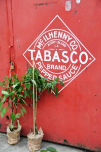 "Tabasco ""Thrill Your Food!"""