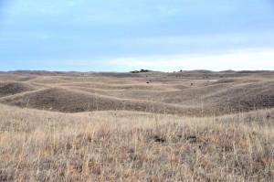 Die Nebraska Sandhills auf der Morgan Ranch