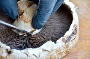 Entfernen des Stiels der Portobello-Pilze