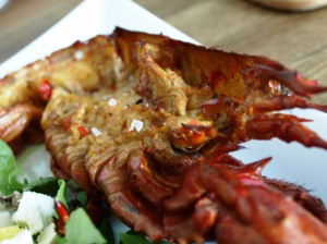 High Pressure Lobster - Kanadischer Hummer